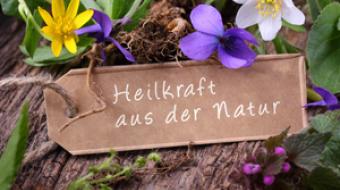 Naturheilkunde von Petra Liebert